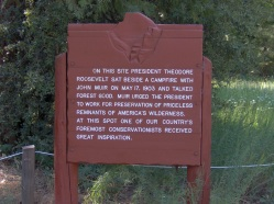 What would Roosevelt and Muir say about the Parks today?