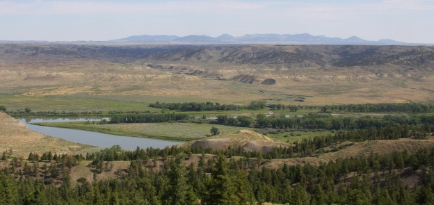 The Charles M. Russell National Wildlife Refuge in northern Montana has been cited as an excellent setting for bison relocation and efforts. Photo by William Wyckoff.