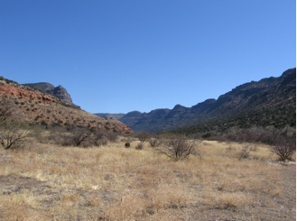 West Clear Creek Wilderness Area was designated in 1984. It protects a perennial stream and diverse riparian area in central Arizona—a rarity in a state defined by aridity. The wilderness boundaries roughly follow the canyon rims making this relatively small wilderness area narrow enough to shout across in places defying the Wilderness Act's intent of designating places large enough for a visitor to get lost. Photo by author.