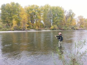 Jen casting on the Gallatin River