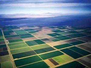 Agriculture in the Imperial Valley